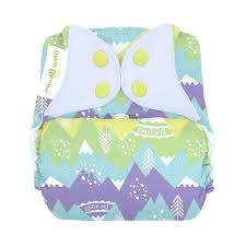 Bumgenius Freetime All In One Cloth Diaper Kiss Used