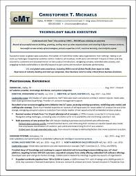 Exceptional Resume Examples Technology Sales Executive Resume Example Distinctive