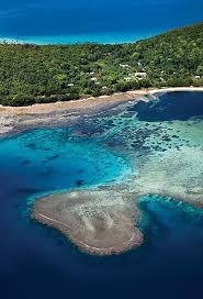Felix Coleman (felixcolemanw1y) | Tonga island, South pacific islands,  Island