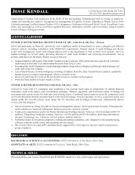 Auditing Resume Examples Audit Internal Auditor Objective Manager