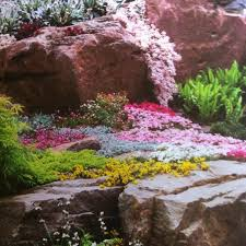 Small Picture 45 best Rock gardening images on Pinterest Gardening