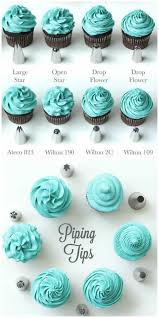 Icing Nozzle Chart Cupcake Frosting Guide All The Best Tips And Tricks