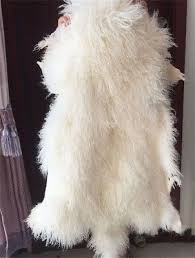 white mongolian fur rug throw tibetan lambskin fur hide pelt curly hair carpet