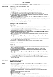 Job Application Portfolio Example Portfolio Management Resume Samples Velvet Jobs