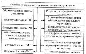 Курсовая работа Современное состояние и основные направления  Наглядно основные блоки законодательной базы ОСС представлены на рис 1
