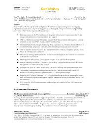 Sap Fico Resume Sample 7 Fbio Fialho English Techtrontechnologies Com