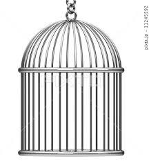 バードケージ 監獄 鳥篭 鳥籠のイラスト素材 Pixta