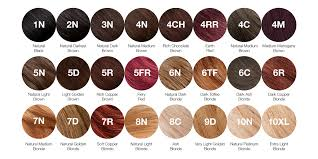 Creme Of Nature Permanent Hair Color Chart Our Colours A Guide To Our Range Of Hair Colours Tints