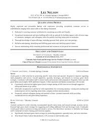 Resume Qualifications Custom Remarkable Resume Qualifications Templates Skills For Customer