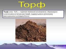 Презентация на тему Автор Ахременко Екатерина Юрьевна класс  torf горючее полезное ископаемое образовано скоплением остатков растений подвергшихся неполному разложению в условиях болот