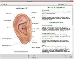 image result for acupressure points chart in tamil weight loss chart weight loss program