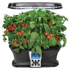 indoor tomato garden. Amazoncom AeroGarden Salsa Garden Seed Pod Kit Plant Indoor Tomato