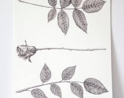 pointillism black and white rose. original rose and leaf print, flower art dot work, pointillism drawing, black white o