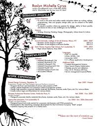 Graphic Design Resume Service Designer Career Goals En Technical