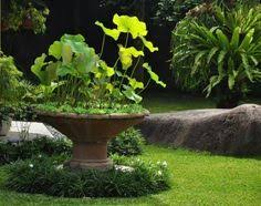 Small Picture Organic Gardening Tips That Can Help You Out Insiders special