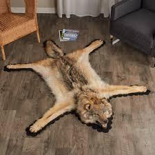 feet inches cm foot arctic wolf skin rug