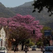 Resultado de imagen para imagenes de yacuiba bolivia