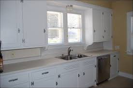 painting kitchen cabinets without sandingKitchen  Best Paint For Bathroom Cabinets Professional Spray
