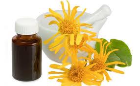 Resultado de imagen para Remedios naturales para las petequias