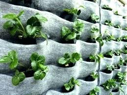 vertical garden planters vertical garden planters vertical garden idea with flora felt planters vertical garden planters