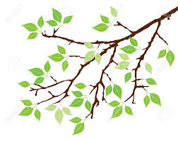 tree branch with leaves vector. vector tree branch with leaves royalty free cliparts, vectors, and .. e