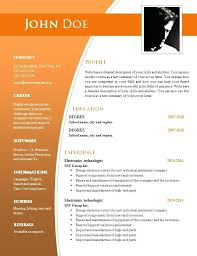 Resume Layout Word Simple Professional Word Resume With Template