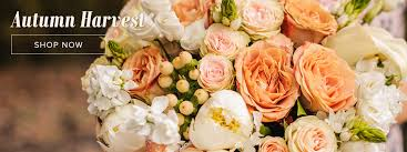 gilbert florist blooming expressions flowers