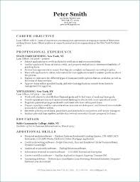 Bank Loan Officer Resume Sample Resume Layout Com