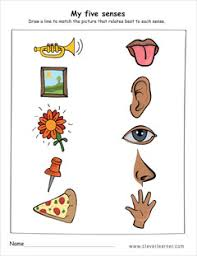 5 Senses Worksheets Kindergarten Free Worksheets Library in addition 29 best five senses images on Pinterest   Kindergarten science besides  in addition 29 best DFyS images on Pinterest   Activities  Human body and together with  in addition Senses worksheet additionally  likewise  besides The Five Senses 1 b w worksheet together with  additionally . on 5 senses worksheets for preschool education com