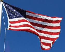all weather nylon american flag