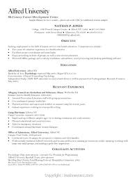 Free Resume Sample Resume Simple Resume Examples Create Human Services Format