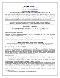 Director Of Information Technology Resume Sample information security resume Thevillasco 57