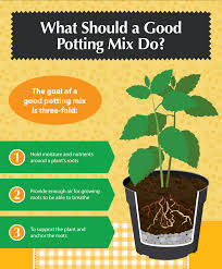 what should a good potting mix do diy potting mixes