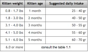 Kitten Weight Chart Kg Cats Persian Cat