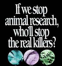 if we don t research on animals we could lose many human lives to  what is going to save us from the diseases and illnesses that are increasing globally will animal testing cure this