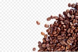 coffee beans png. Unique Png The Coffee Bean U0026 Tea Leaf Espresso Cafe Dolce Gusto  Coffee Beans With Beans Png O