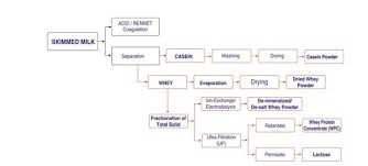 Whey Processing Flow Chart Ssp Pvt Ltd