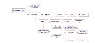 Whey Processing Flow Chart Ssp Pvt Ltd
