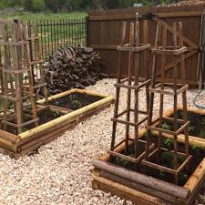 Diy tomato cage Nepinetwork Diy Tomato Cage Ideas Bless My Weeds Diy Tomato Cage Ideas Page Of Bless My Weeds