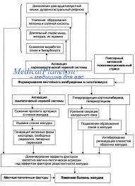 Язвенная болезнь желудка и двенадцатипёрстной кишки этиология и  Этиология и патогенез язвы желудка и дпк