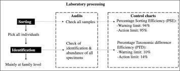 Minimizing Human Error In Macroinvertebrate Samples Analyses