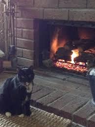 san bernardino fireplace woodstove specialties 15 reviews fireplace services 2240 e highland ave san bernardino ca phone number yelp