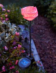 moonrays lighting. moonrays pink rose stake light lighting s