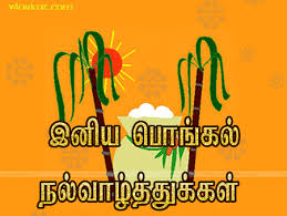 Image result for happy pongal in tamil language