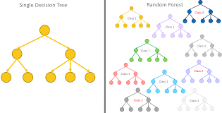 From A Single Decision Tree To A Random Forest Dataversity