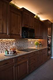 Kitchen Counter Lighting Ideas Best 25 Under Cabinet Lighting Ideas On Pinterest Cabinet
