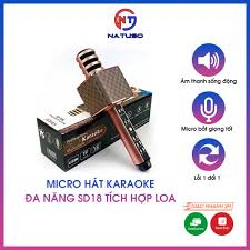 Mic hát karaoke đa năng SD18 tích hợp loa bluetooth không dây âm thanh hay  có đầu bảo vệ mic hỗ trợ thẻ nhớ usb cổng 3.5 tại Hà Nội