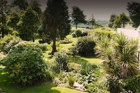 pine tree lodge garden