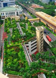 pin on green roofs and walls