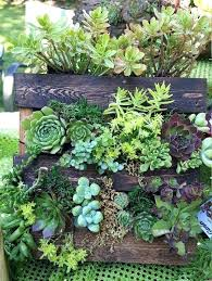 garden wall planter ideas pallet vertical it or planters